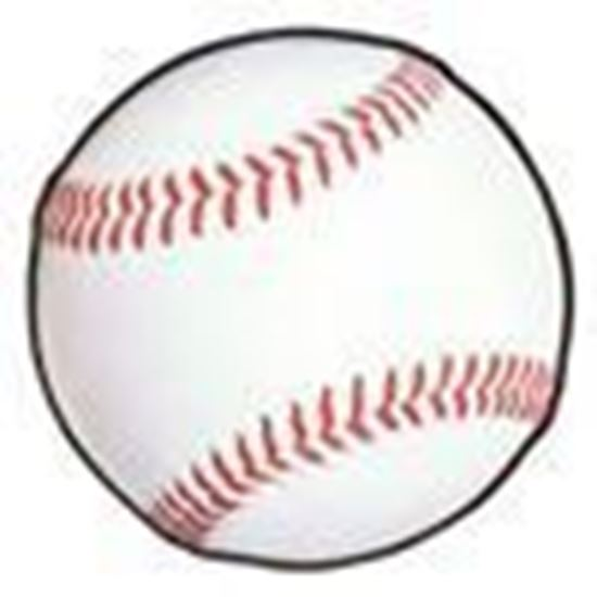 Picture of 2020-21 HHS Baseball Athletic Fee